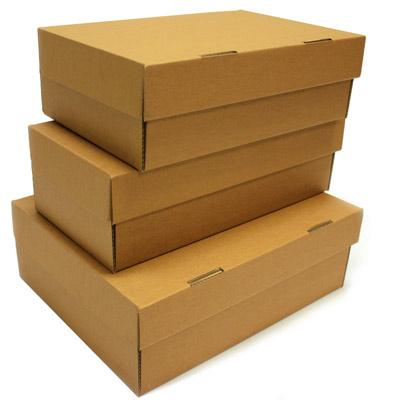 cardboard-shoe-box