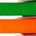 decorative-grosgrain-ribbon_alt_img_3