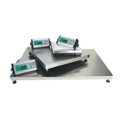 adam-cpw-bench-scales