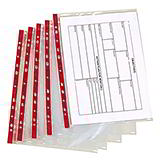 HEAVY DUTY PUNCHED POCKETS - CLEAR, GREEN STRIP